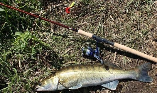 Джиговая ловля судака весной
