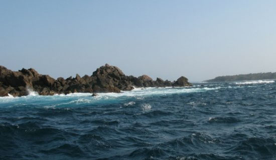 Ловля спиннингом на море