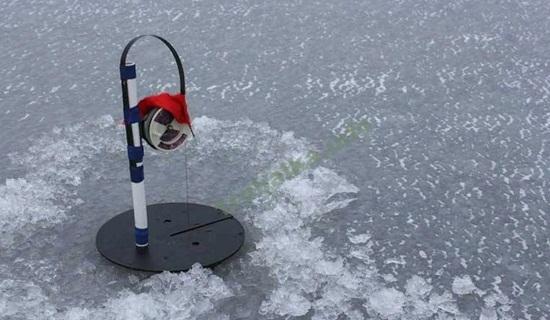 Тактика ловли судака зимой на жерлицы