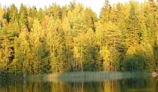 Где ловить карася осенью