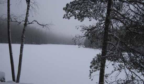 Ловля леща ночью зимой