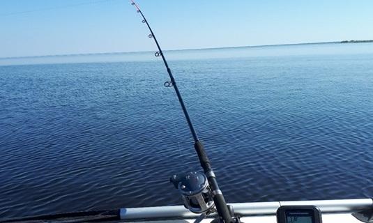 Троллинговая рыбалка на воблеры