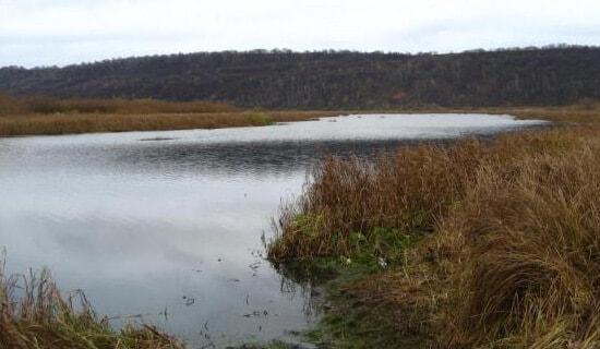 Ловля хищника осенью на малых водоемах