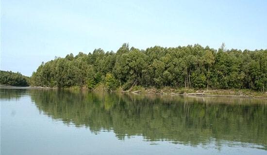 Рыбалка на Оби и Обском водохранилище