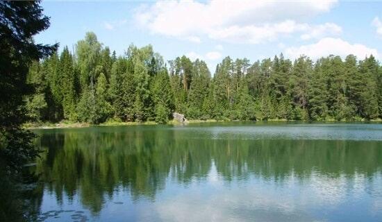 Ловля карася на озере
