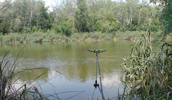 Подготовка червей к рыбалке