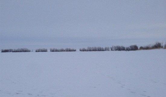 Отчет о рыбалке Большечерниговский район 7 февраля
