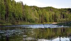 Рыболовные базы Ленинградской области